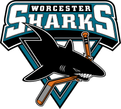 Worchester Sharks