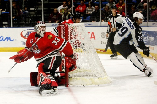 (Photo Credit: Rockford IceHogs // flickr)
