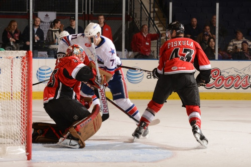 (Photo Credit: Rochester Americans // flickr)