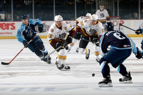 (Photo Credit: Ross Dettman // Chicago Wolves)